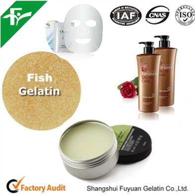 Fish Gelatin for Cosmetics, Chemical Auxiliary Agent