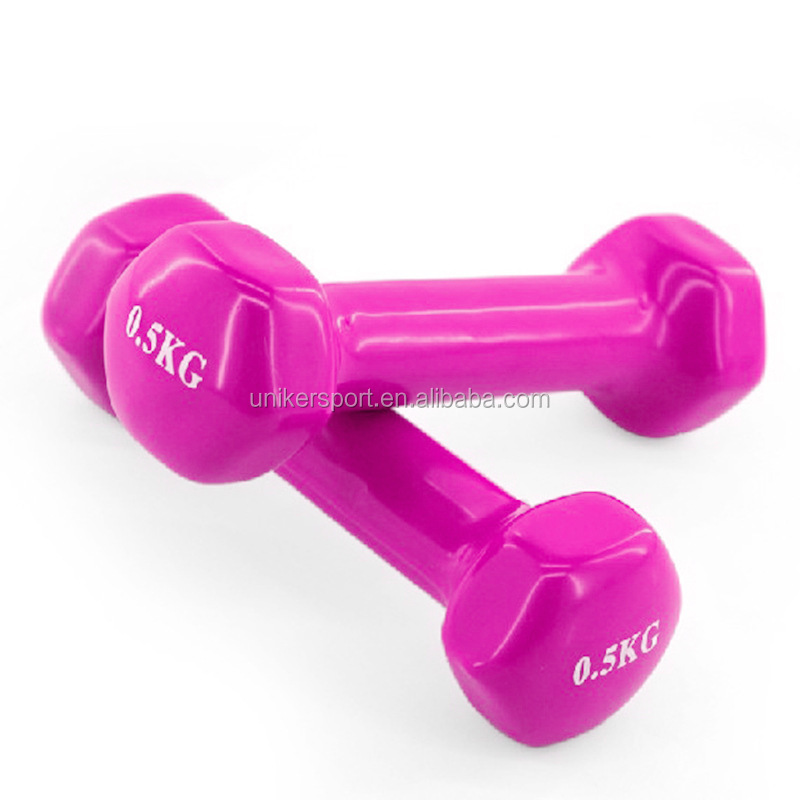 Portable Cheap Dipping Dumbell Set