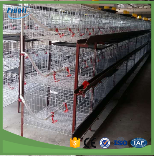 Different sizes 3 tier cool galvanized H-Frame battery chicken cage