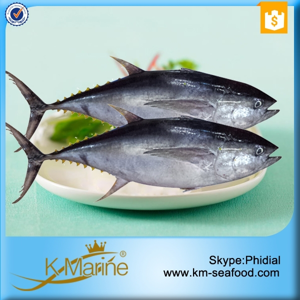 Fair Price Good Yellowfin Tuna