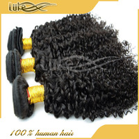 Wholesale manufacturer unprocessed natural Brazilian human afro kinky braiding hair