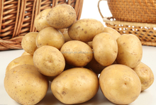fresh potatoes with low price wholesale potatoes