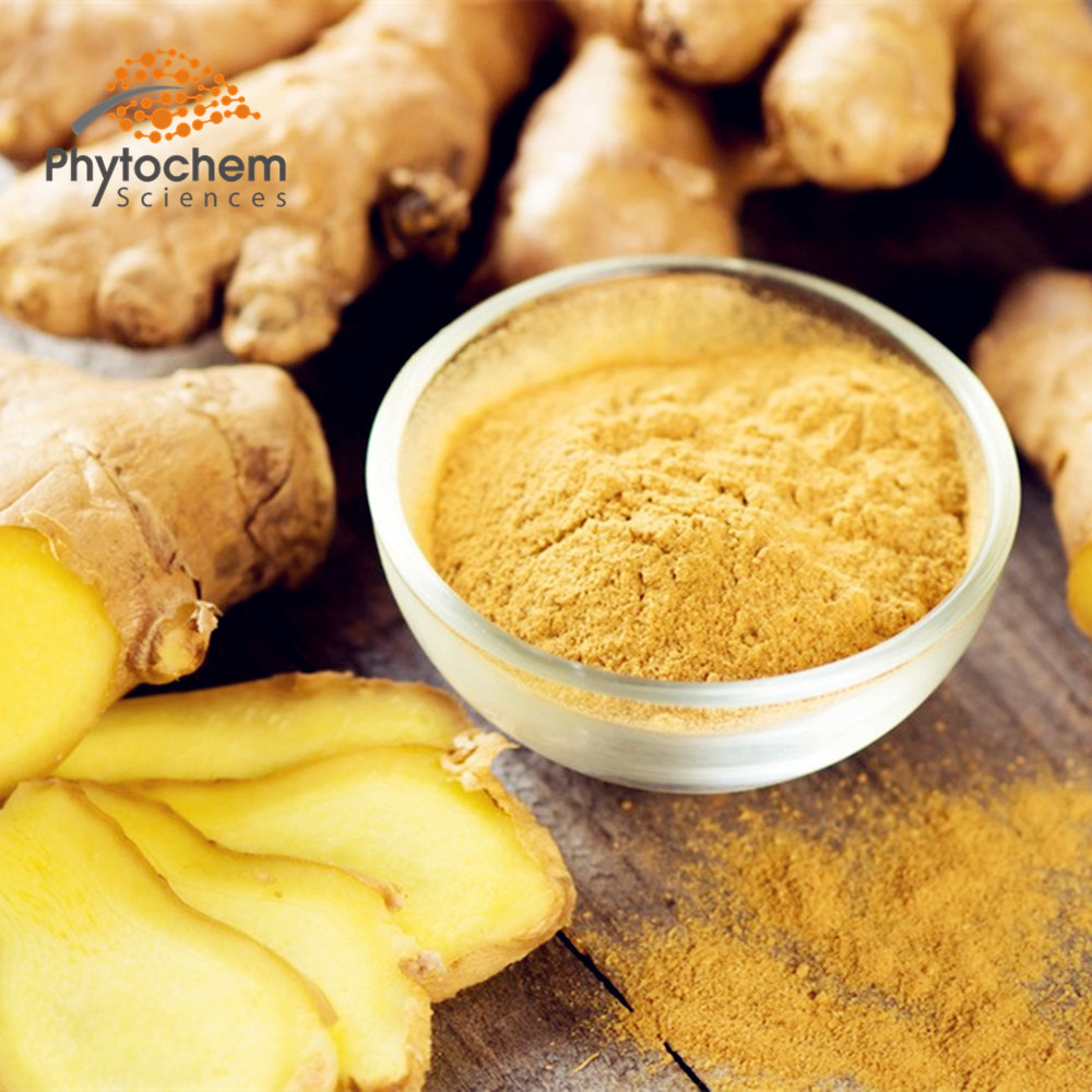 Ginger Extract Gingerol