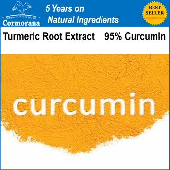 Main Product Turmeric Root Extract 95% Curcumin Powder On Promotion