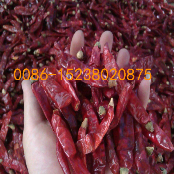 green pepper stem cutting machine fresh pepper stem remove green pepper stem remove