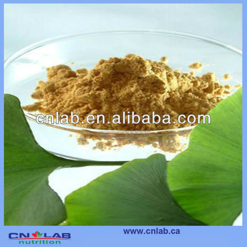Factory Supply High Quality Ginkgo Biloba Flavones---For Health And Madical