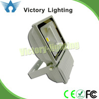 indoor stadium decorative cob 100W dmx rgb flood lighting
