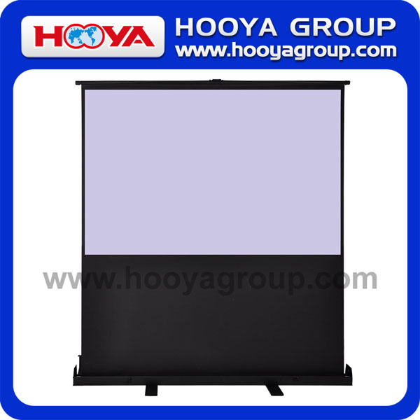 Projector / projector screen