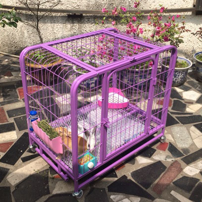 New Factory Antique Bird Cage Metal Dog Cage with Cheap Price