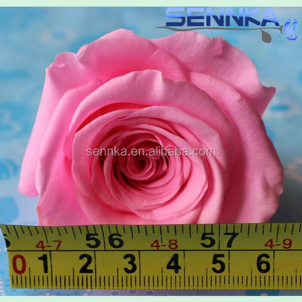 Decoration preserved not artificial rose head with various color preserved walmart wedding flowers