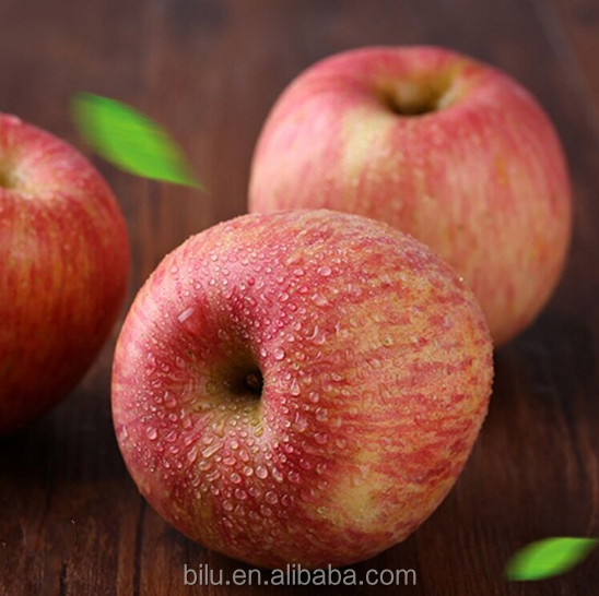 Good Quality Of soft Mouthfeel Fuji Apple Fruit