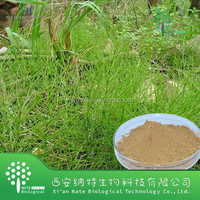 Natural Horsetail powder Extract Silica acid,Horsetail P.E.7% Silica Acid