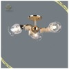 Unique Design Modern Ceiling Light with Beautiful Accessories, Cheap Glass Ceiling Lamp