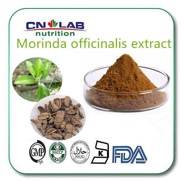 Enhance sexual morinda extract,protect kidney,ba ji tian powder