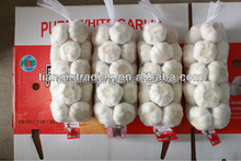 Organic Fresh New Pure White Garlic 1kg/bag, Fresh White Garlic