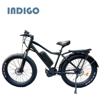 China wholesale electric fat bike 48v 1000w high quality low price
