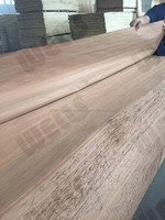 Linyi CE certification easy sticky no black dot flat red sliced cut Grade A 4x8 0.28mm recon gurjan veneer