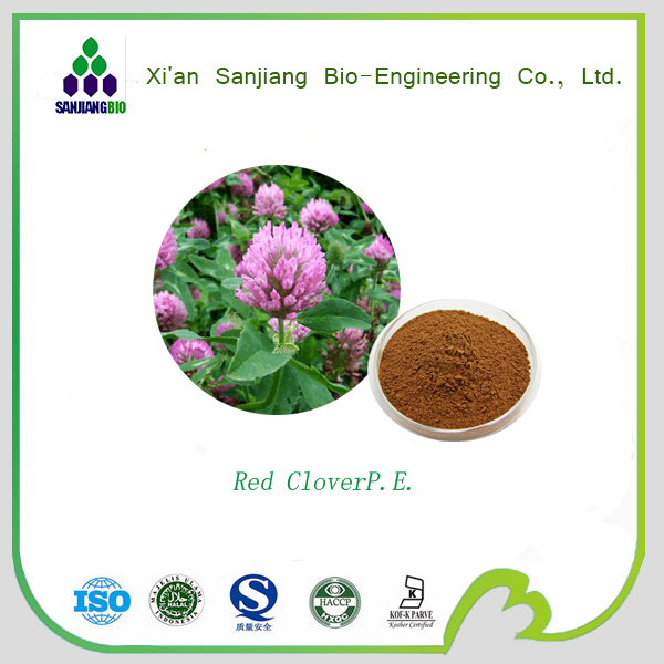 High Quality Food Grade Natural Pure red clover extract/red clover extract 8%