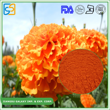 Professional factory herbal lutein powder marigold flower extract