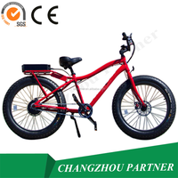 TOP E-cycle 1500w new electric mountain bike mid drive from changzhou