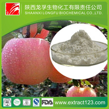 Organic Food Apple Extract Powder 15%Apple Cider Vinegar Help Lose Weight