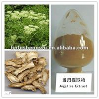 Pure natural plunt extract Angelica Extract/Dong Quai 1%Ligustilides(HPLC)