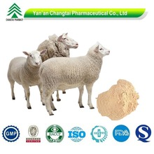 High Quality Natural sheep placenta extract