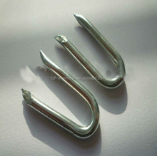 Barbed U-shape Nails/Square bottom U shaped nail (ISO9001)
