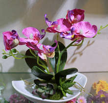 6 Heads Unsymmetry Artificial butterfly orchid Real touch Bonsai Flower