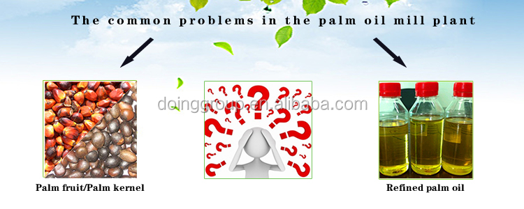 palm oil faq.jpg