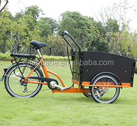 bicycles for sale three wheels electric bisikle 36V family electric cargo tricycle bike/cargobike/bakfiets UB9031E