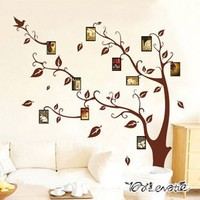 30pcs Fashion combination removable wall stickers photo memory tree sticker