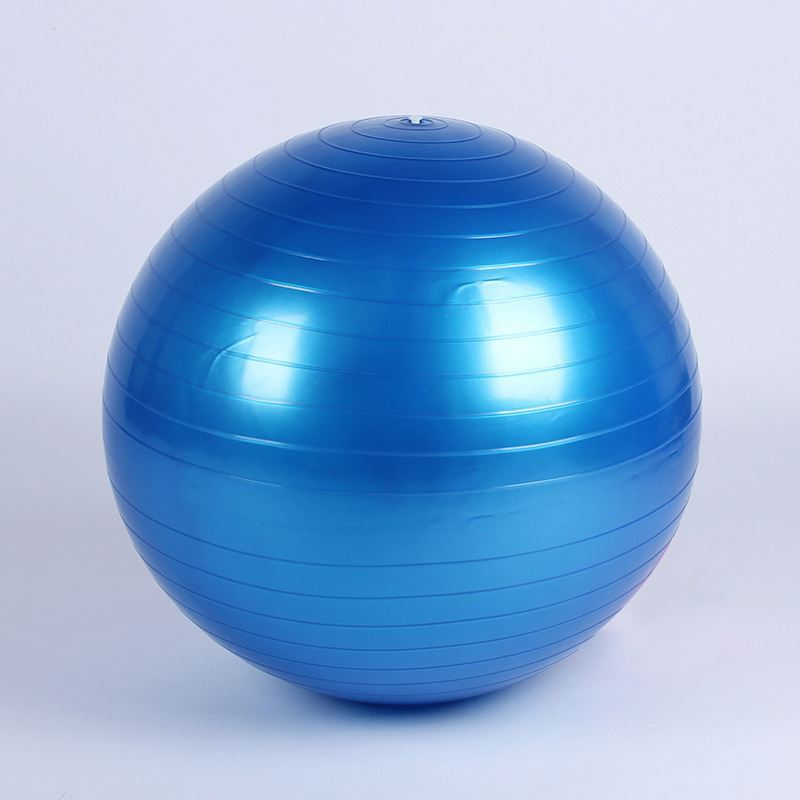 wholesale china factory supply 55cm handle fitness ball with pump
