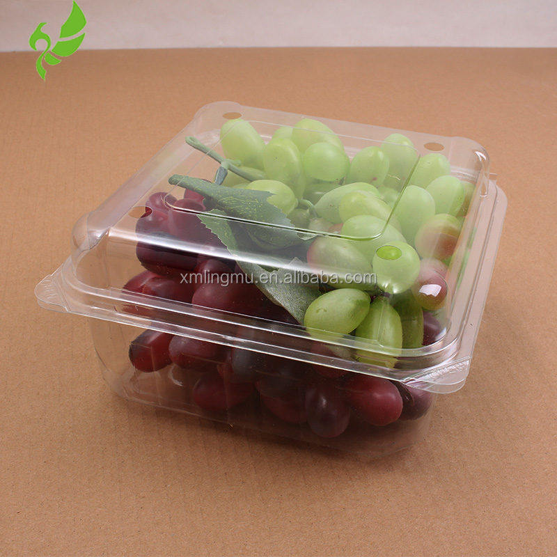 Hot Sale Custom Color Clamshell Blister Tray for Fruit Packaging