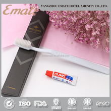 Hotel toothbrush/hotel dental set/disposable dental kit
