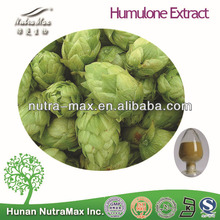 2014 Hot Sale Humulone Extract Powder 5:1 10:1 20:1--NutraMax Supplier