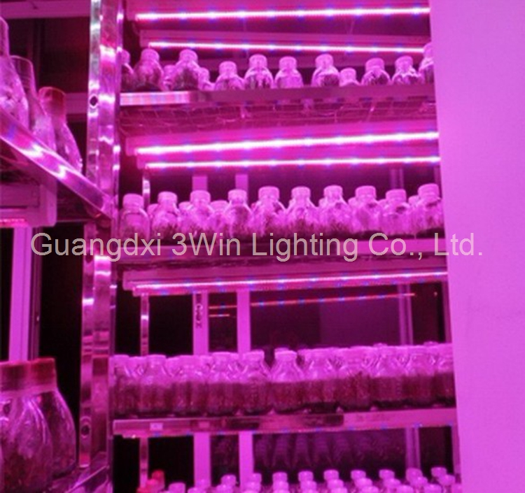 Agricultural Greenhouses T8 4ft Tube LED Grow Light 15W with CE FCC RoHS Approved