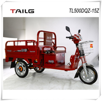 Electric tricycle adult 650W 48V20AH TAILG cargo tricycle for sale