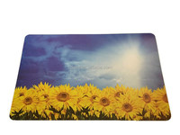 Sunflower pattern popular waterproof pp placemat
