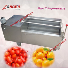 Brush Type Fresh Date Washing Machine|Commercial Mango Cleaning Machine
