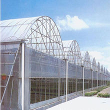 Low cost multi-span tunnel greenhouse for sale