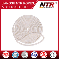 Nylon 3-strand Twisted dock line,anchor line rope with splice ring