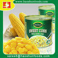 Sweet Corn in can with Brine