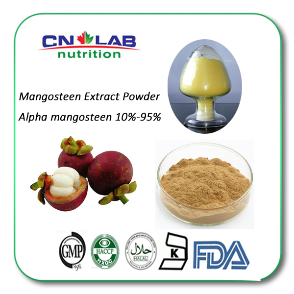 Mangosteen Peel Extract Polyphenols Powder 10% 30% 20%