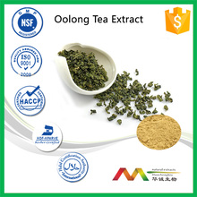 NSF-cGMP factory supply best price Oolong Tea extract,Instant Oolong Tea Powder