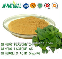 Ginkgo Leaf Extract Flavone