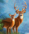 The diamond painting of Wild deer for Home decroration DIY Wall Art