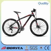 Borita CK 650 Light Weight Downhill Mountain Bike 10kg Hybrid Bicycles For Sale