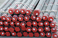 Seamless Steel Pipes/Tubes/Casing