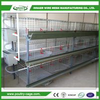Trustworthy China supplier poultry farm design